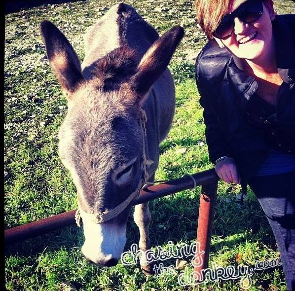 me and donkey