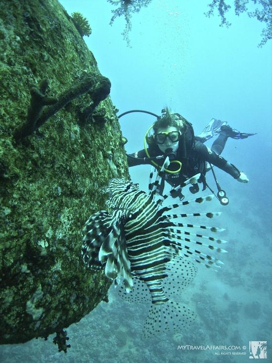 Diving_Aqaba