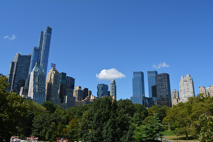 New York City Skyline Central Park