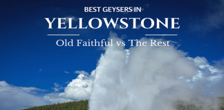Best Geysers in Yellowstone