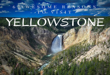 Things to see in Yellowstone