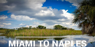 Drive from Miami to Naples