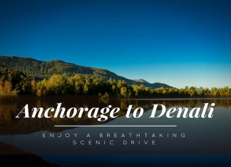 Drive from Anchorage to Denali