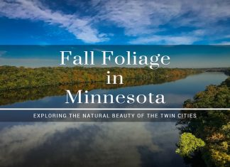 fall foliage in Minnesota