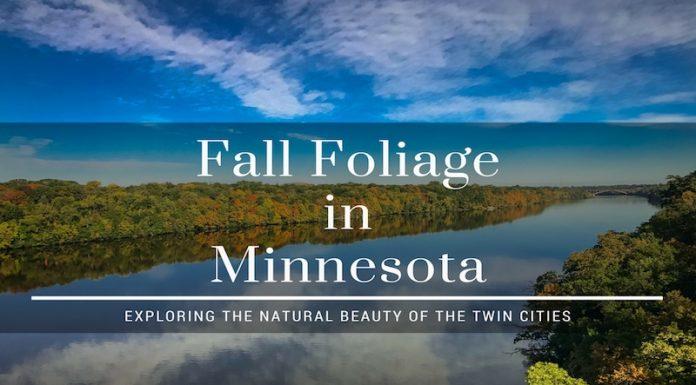 fall foliage in Minnesota