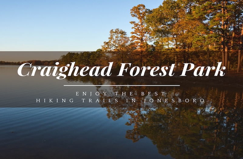 Craighead Forest Park – A Guide to the Best Trails in Jonesboro