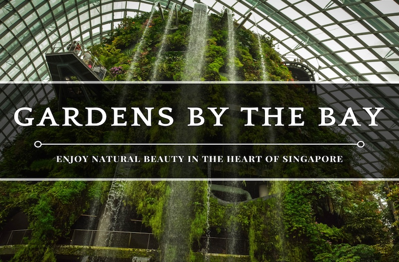Gardens by the Bay Tour – How to Enjoy Nature in the City?