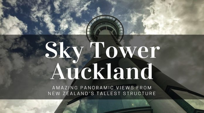 sky tower in auckland