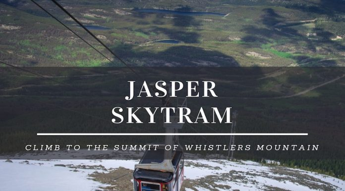 whistlers mountain jasper skytram