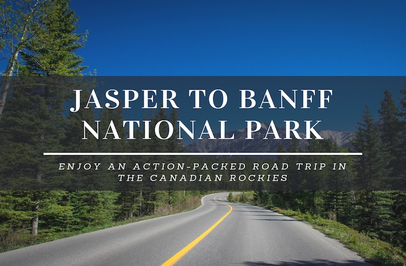How to Enjoy the Amazing Drive from Jasper to Banff?
