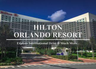 hilton orlando international drive