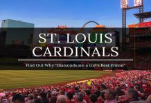 day with the cardinals