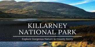 killarney national park tour