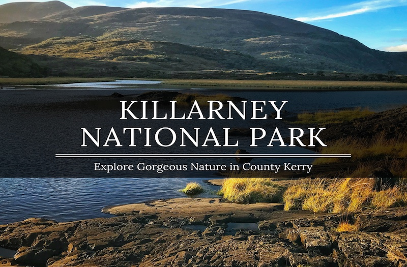 Killarney National Park Tour - A Guide to the Best Attractions
