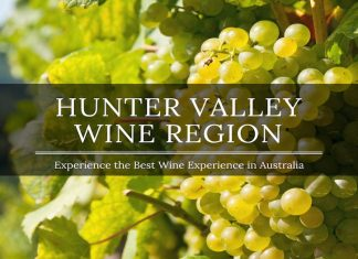 hunter valley region newcastle
