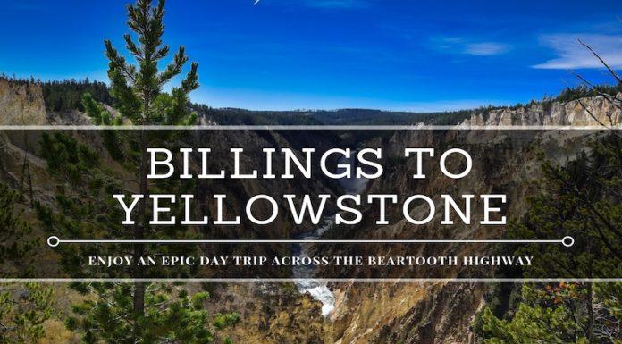 billings to yellowstone