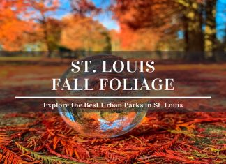best fall colors in st louis