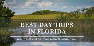 best day trips in florida